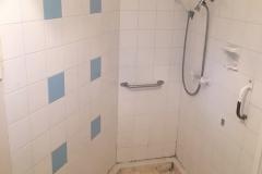 Dept. of Housing Shower 1